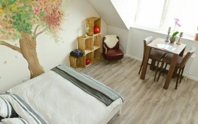 the loft, amsterdam, noord, appletree, bnb, B&B, Frans, Elien, slapen, sleep, spacious, king size bed,